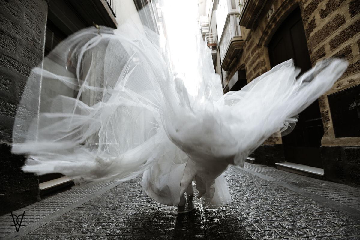 Fotograsfía de novia desde atrás con cola al vuelo